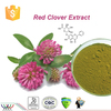 Hot Sale 100% Natural Plants Estrogen Red Clover Trifolium Pratense L. Powder with 2.5% Isoflavones