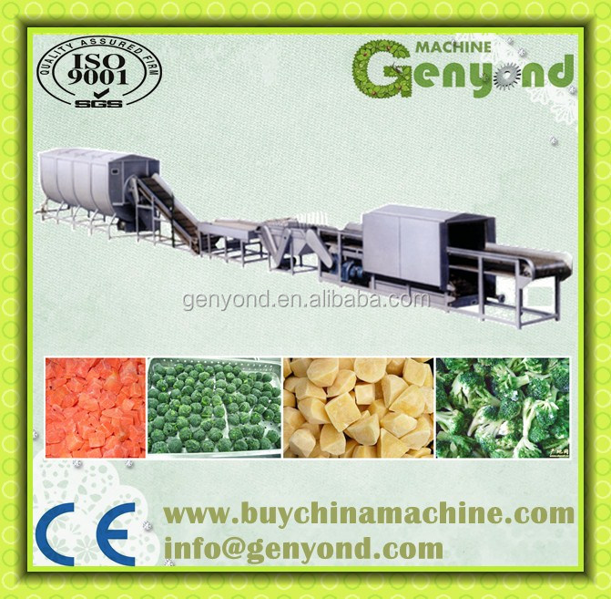 Quick freezen fruits and vegetables production and packing line