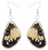 Unique and nice REAL butterfly wings women earring