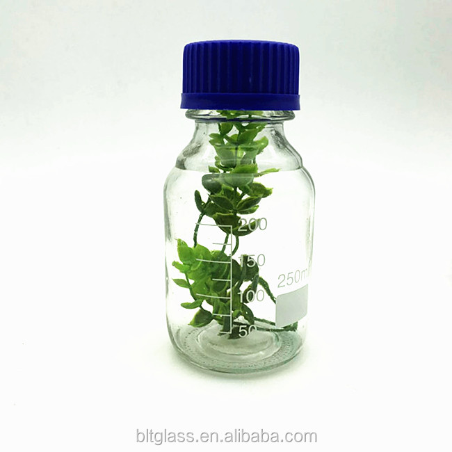 250ml flask clear autoclavable reagent apothecary glass bottle with scale and bule lid