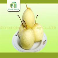 2015 new crop ya pear products fresh fruit