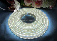 Dimmable Led Rope Light Flexible Led Strip Lights 100m Decoration ...