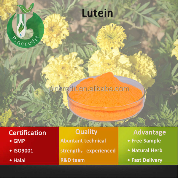 2014 Chinese GMP Super Lutein Extract Eye Protection Lutein