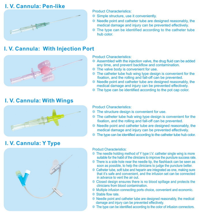 Parts Of Iv Cannula