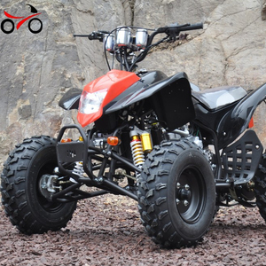 250cc ATV Racing Quad Bike 4 Wheeler ATV for adults QWATV-08I QWMOTO