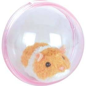 Running Hamster In A Ball