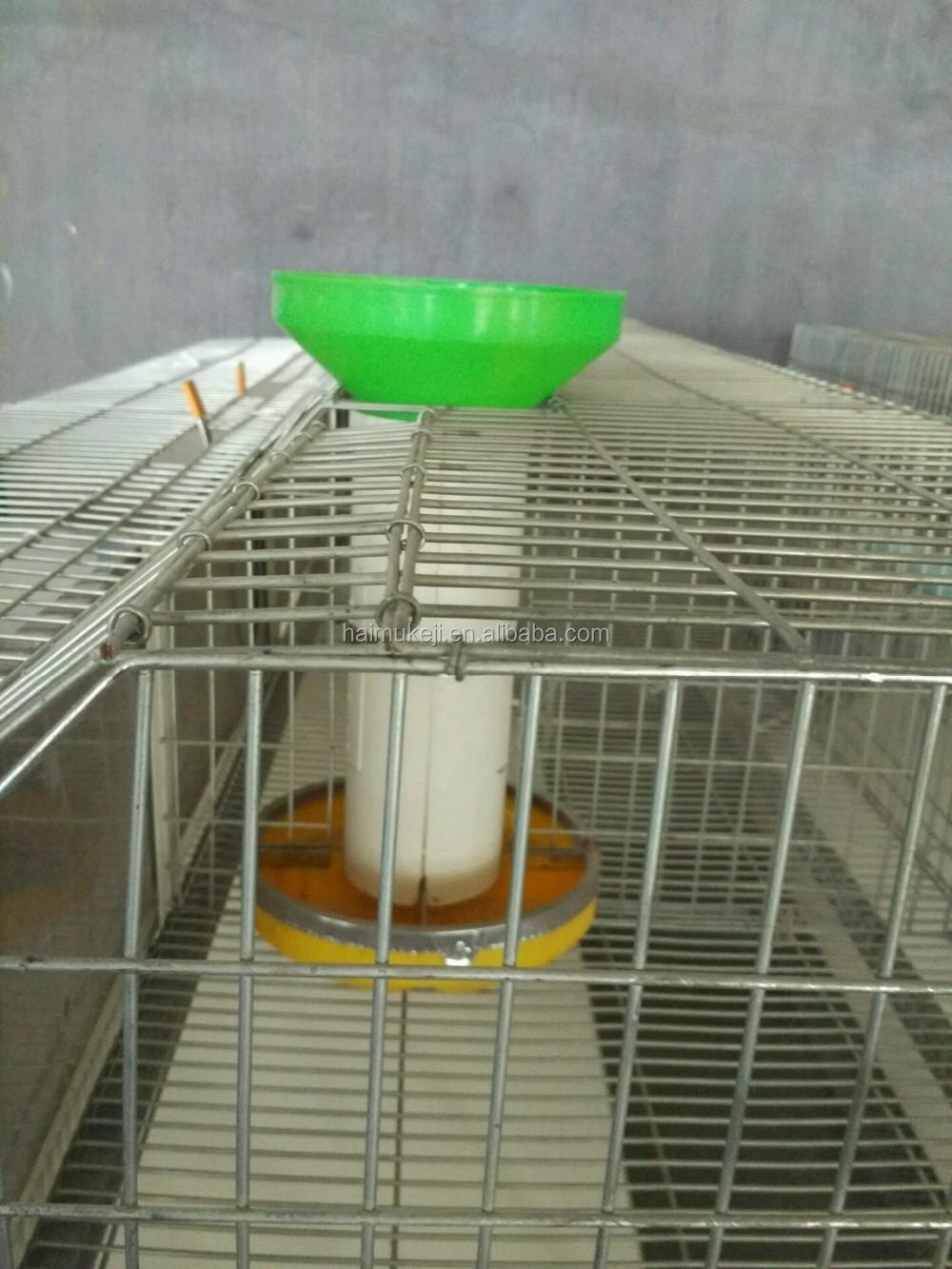 Großhandel Automatische Zucht Kaninchen Käfig/hutch Made In China ...