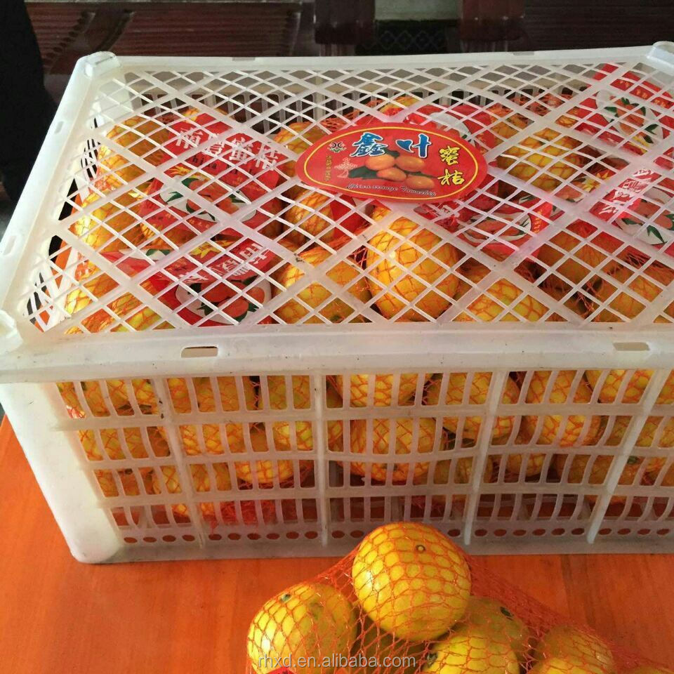 Fresh Chinese Baby Mandarin Orange/Sweet And Fresh Orange From China
