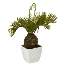 Hot sale artificial sago palms in door home decorations artificial cycas palm tree