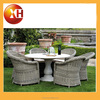 Outdoor Beer garden dinning table and bench set for garden
