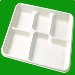 Eco-friendly Disposable Sugarcane Bagasse food Tray