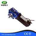 Brushless servo dc motor with worm gear ,24v 200w ,60mm small size