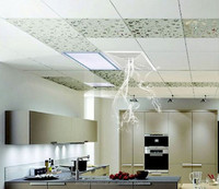 Home Ceiling Mounted Exhaust Fan For Bathroom,Kitchen - Buy Home ...