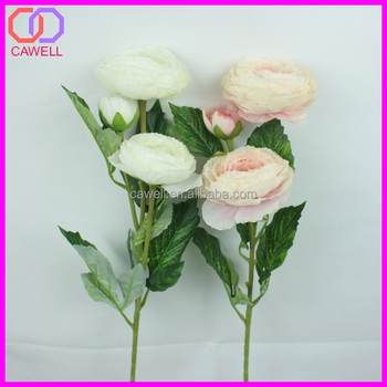 stocking indoor different type of flowers buy different type of