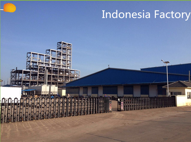 Indonesia Factory Soap Noodles For Medicated Soaps