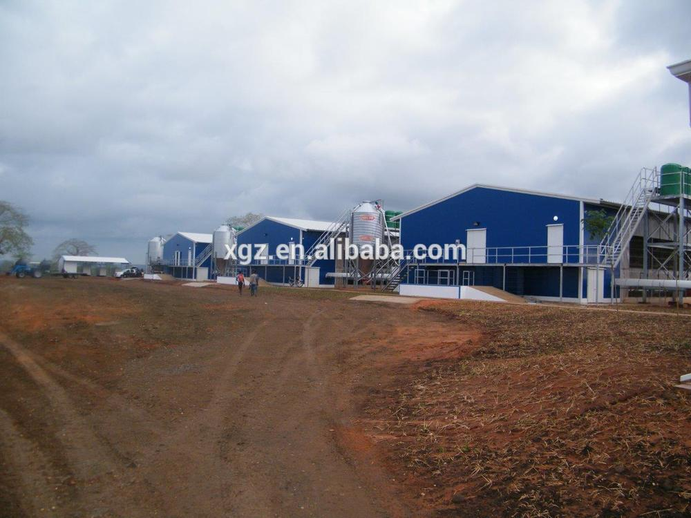 Steel Structure broiler poultry farm house design