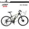 New model green power road electric bike,electric delivery bicycle
