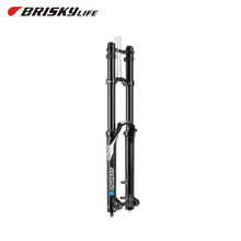 Cheap Price Bicycle Double Crown Fork Suspension