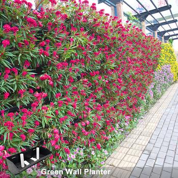 Outdoor Diri Penyiraman Vertikal Garden Dinding Tanaman Tumbuh Sistem Bunga Pot Planter Buy Diri Penyiraman Pot Bunga Dinding Tanaman Sistem Product On Alibaba Com