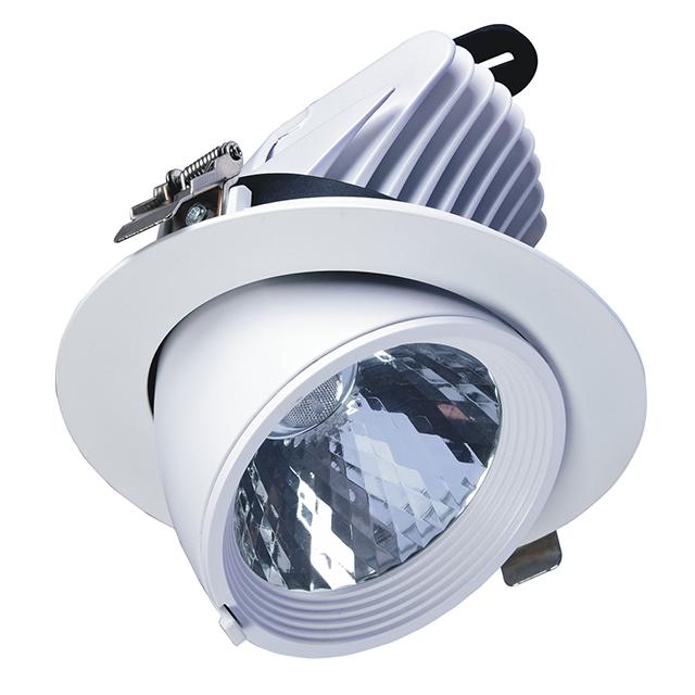 Spotlight 10W Ceiling Lights COB White LED Spot Light Price