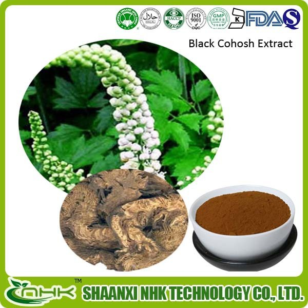 Hot Sale Women Menopause Triterpene Glycosides 2.5%-8% extract from Black cohosh p.e.