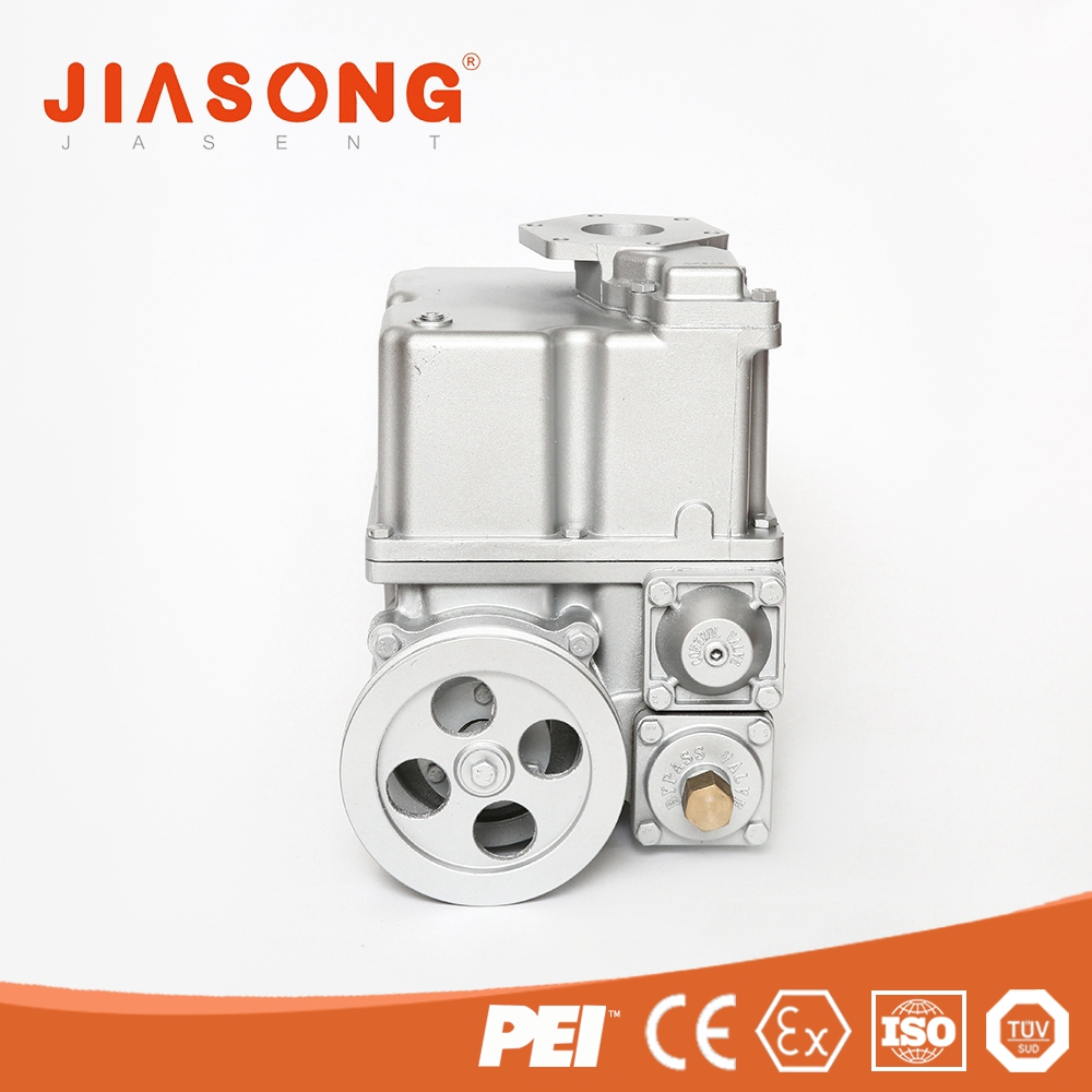 Professional customization petrol pump / high flow rate pump