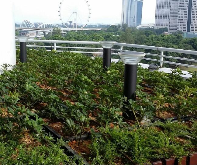 Low Voltage Solar Landscape Lighting 9v Solar Garden Lights Solar ...