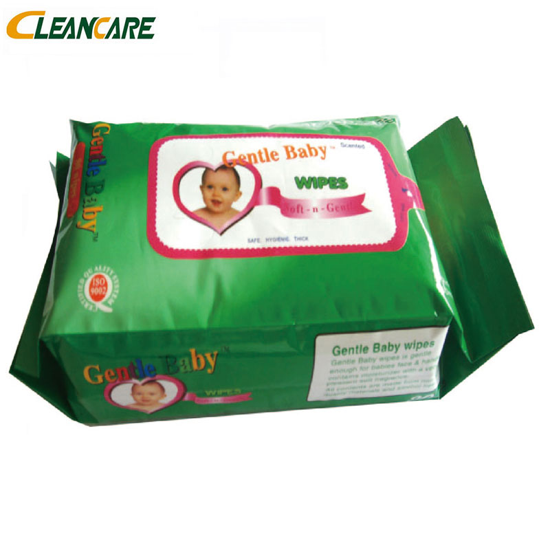 Natural High Quality Competitive Price Wholesale Baby Wipe China, Oem Baby Wet Wipe With Cover Pocket Pack Water