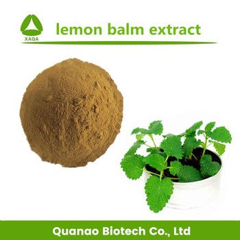 GMP factory supply 10:1 Melissa Officinalis Extract powder/lemon balm extract