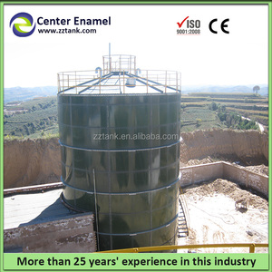 turnkey Chinese biogas plant with biogas digester