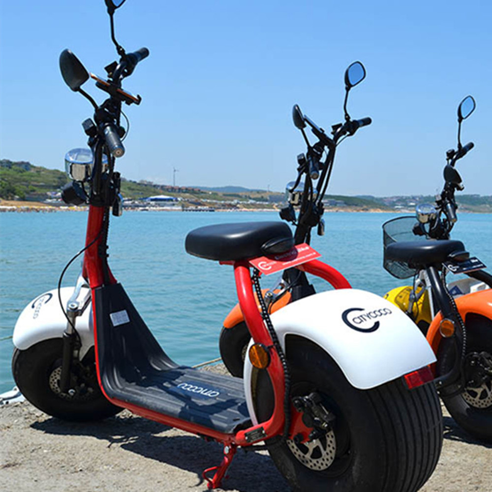 EcoRider street legal citycoco with double seat and mirrors, two wheel electric scooter for adult