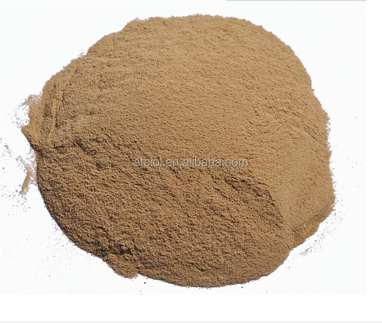 Photosynthetic bacteria for poultry shrimp fish feed