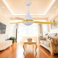 Zhongshan New Come High Quality Living Room Decorative Remote Control Low Noise Dc Ceiling Fan with 24W Led Light