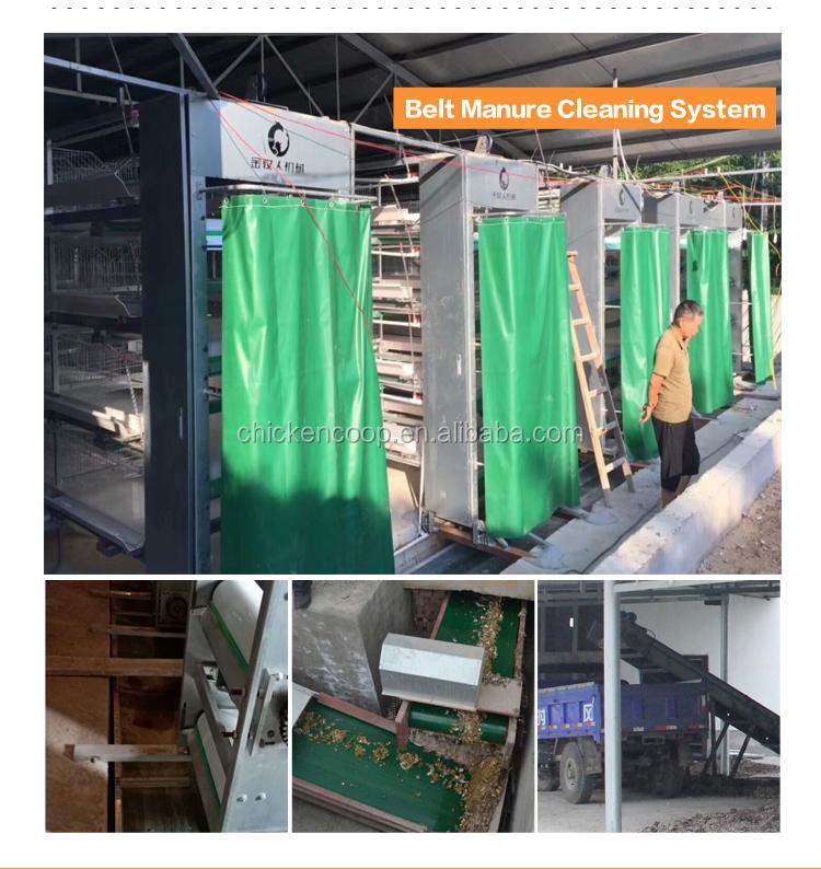 Jinmuren Versorgung Vollständig Automatische Legehennen/Ei Schicht Batterie H Typ Huhn Käfige System