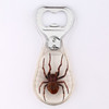 2016 fresh cool beer bottle opener with real insect spider