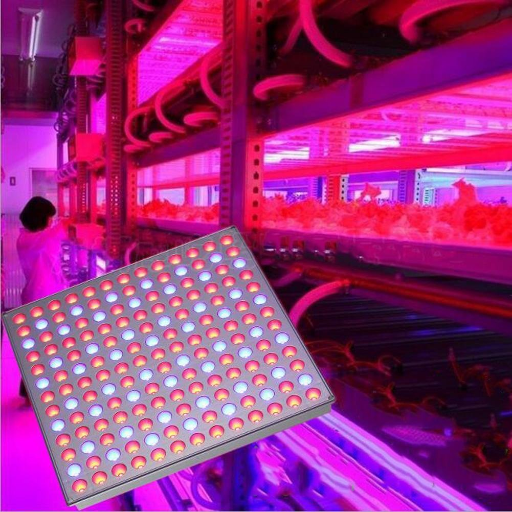 Wei-d Panel Plant Lights Plant Growth Fill Light 45W Plant Growing Panel LED Red Blue Hydroponic Growing Lights for Flowers Plants Vegetable , 45W