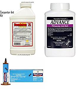 Carpenter Ant Control Kit Carpenter Ants Advance Maxforce Ant Bait Dominion 2l