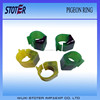 high quality rfid pigeon foot ring for racing management homing pigeon ring