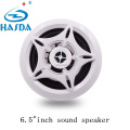 6.5 ' inch marine sound speaker of mp3 rado BT play for sauna spa pool kitchen