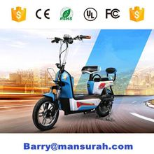 250W 36V 3 wheel electric bicycle/cargo bike with dis brake 6 speeds family used cargo bike tricycle UB 9031E