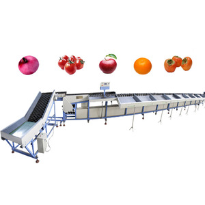 1SO9001 TOP QUALITY ORANGE APPLE TOMATO ONION SOTRER/SIZER/GRADER