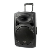 Professional new 12 inch outdoor portable karaoke USB rechargeable bluetooth woofer amplifier trolley speaker with wireless mic