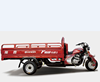 China Loncin 3000kg 200cc 250cc heavy load adult gasoline cargo tricycle/three wheel motorcycle for sale in Philippines