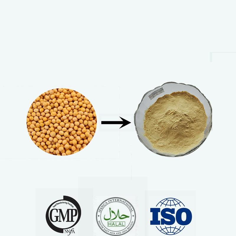 Isolated Soy Protein Powder / ISP 90% NON-GMO /soy protein concentrate