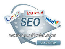 professional google seo top ranking,Earn money with internet