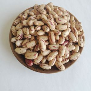 2018 Chinese good color light speckled kidney beans long shape for sale