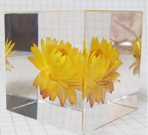 Resin Flower Paperweight Resin Flower Paperweight Suppliers And