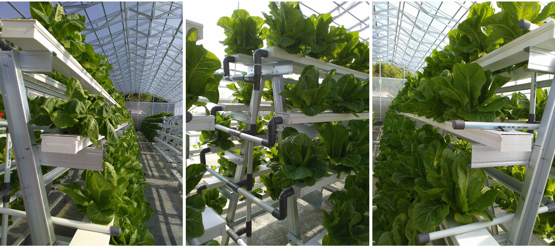 Plastic pvc pipe hydroponic nft grow gutter system for greenhouse