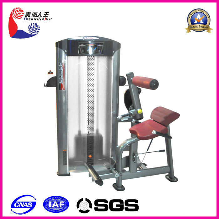 Gym Equipment Vendors: Japanese Fitness Equipment Manufacturers