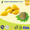 instant Mango Juice Drink Powder as raw material for food and beverage